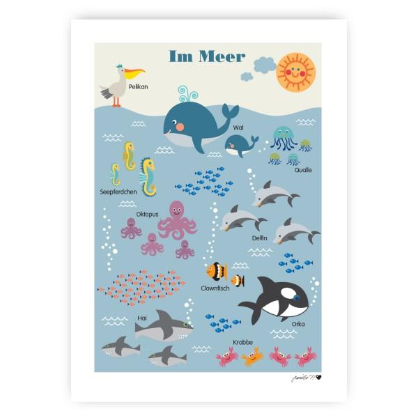 Meerestiere Poster