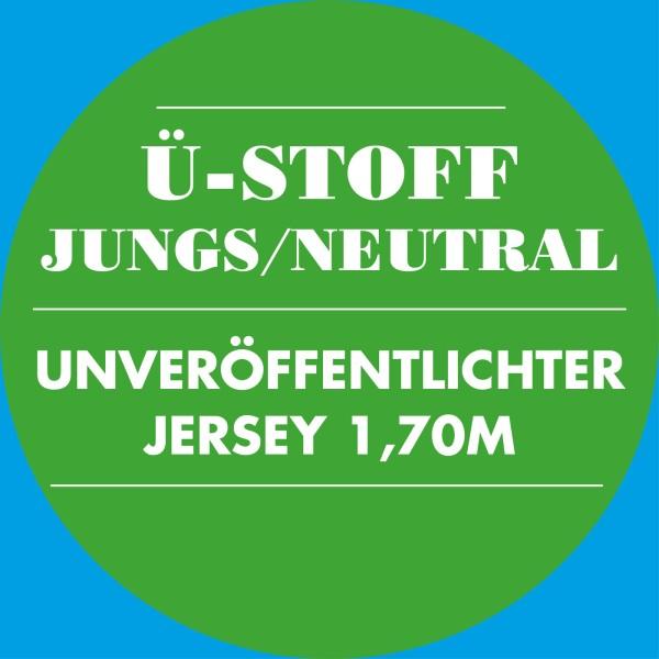 Jersey Überraschungsstoff / Neutral 2020