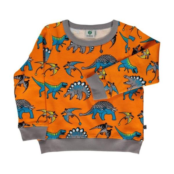 Sweatshirt / Dinos