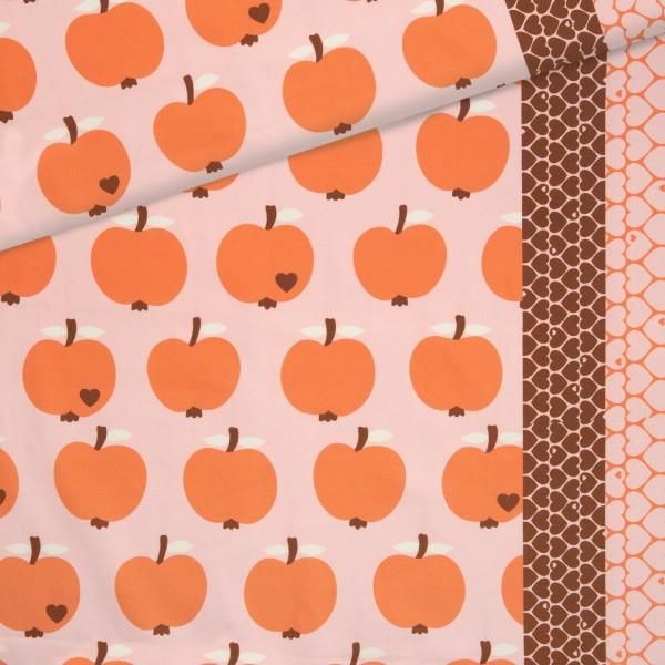 Schnäppchen Canvas Apfel / Orange